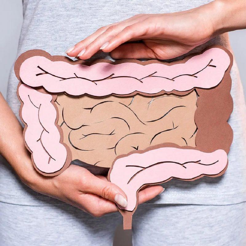 microbiota-2